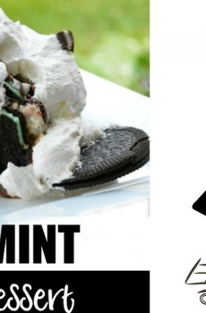 Oreo Thin Mint Trifle Dessert {Deals to Meals}