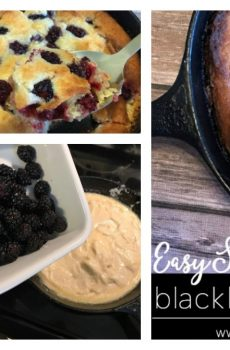 Easy Blackberry Skillet Cobbler Recipe {Deals to Meals}
