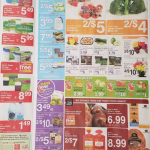 Harris Teeter Deals 9/20 - 9/26